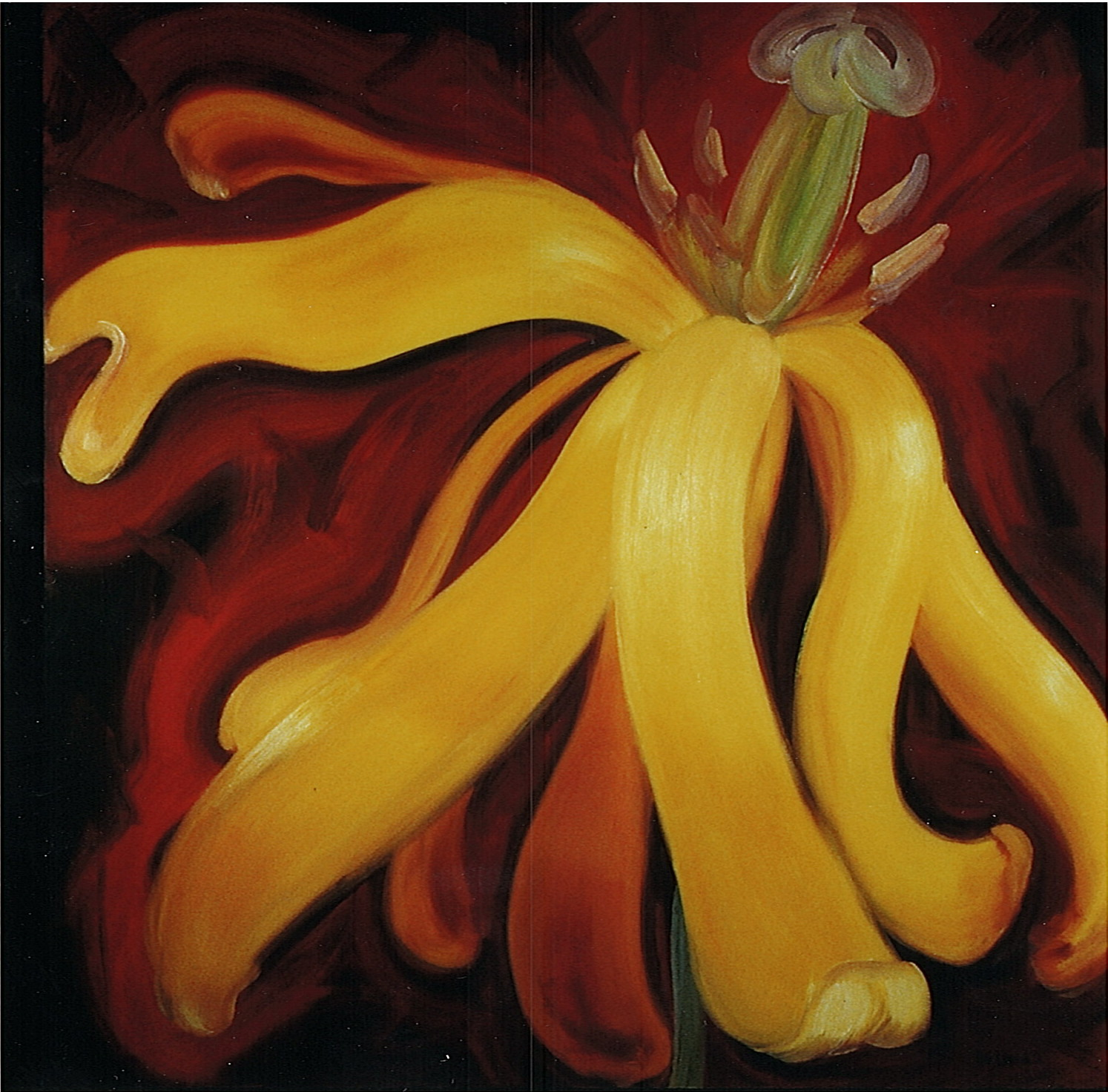 yellow_flower_1