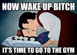 wake up bitch