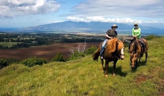 Horseback-Maui