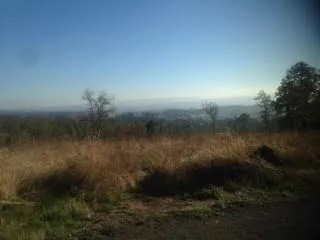 view from nature trail workout