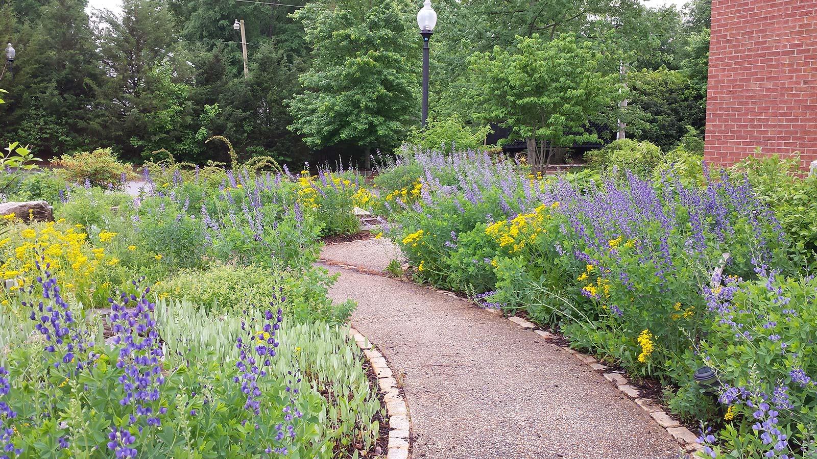 Pickens County Museum | Earth Design Landscape Architecture ...