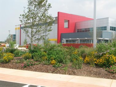 earth-design-landscape-architecture-pickens-sc-walgreens-2