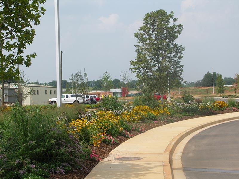 earth-design-landscape-architecture-pickens-sc-walgreens-4 - Walgreens Earth Design Landscape Architecture & Environmental