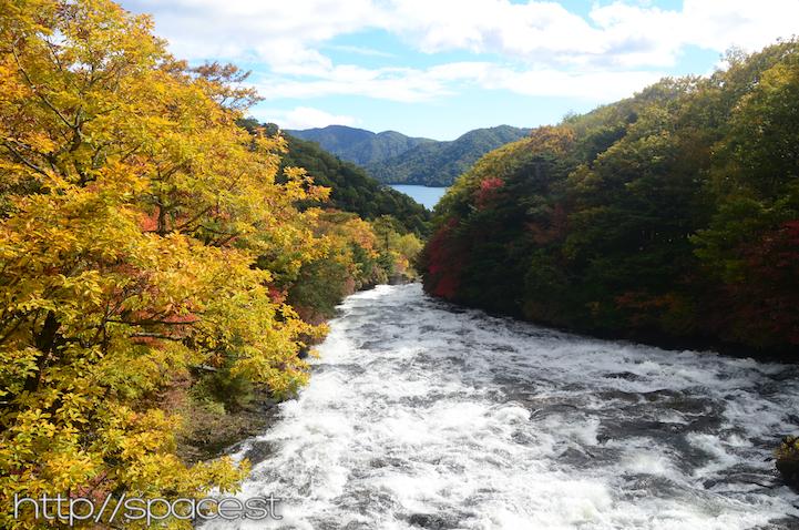 Ryuzu Waterfall falls leaves
