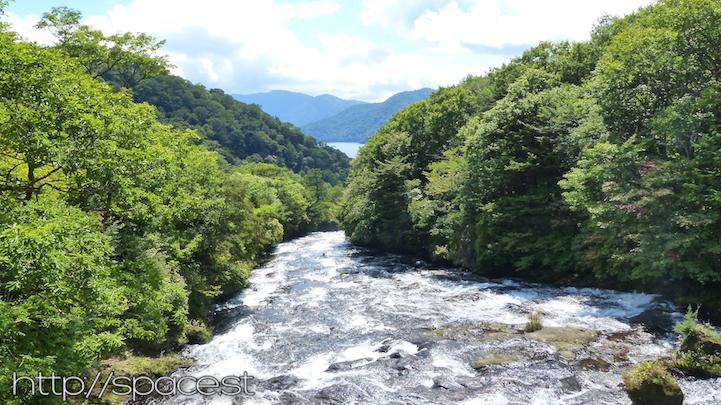 Ryuzu Waterfall green leaves