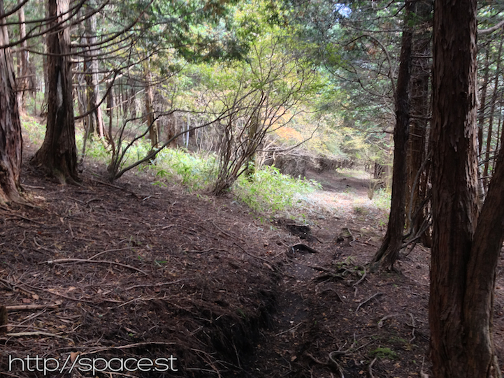 the path at the base of Nyoho Mountain near the Nikko Unesco World Heritage Area