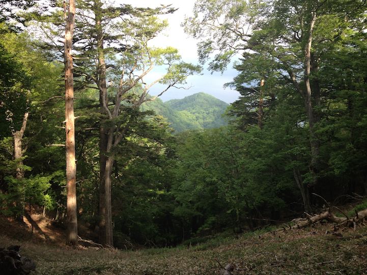 view of the nearby peak of Otake Mountain