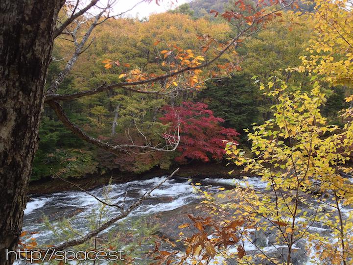 view from the ryuzu waterfall boardwalk