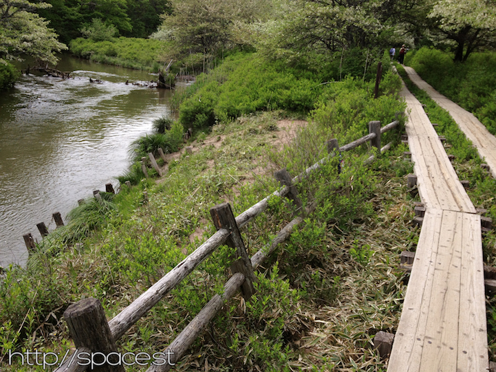 boardwalk along Yu river Senjogahara