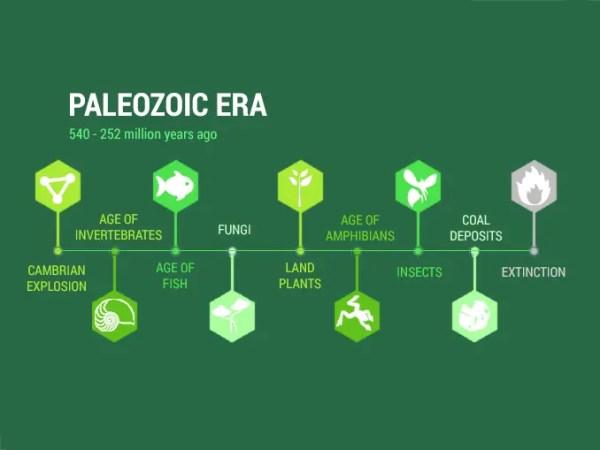 Paleozoic Era Diversification of Life 540 to 252 million