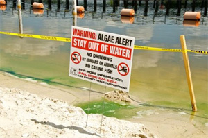 Warning sign on Caloosahatchee River in June 2011. (Mike Dove)