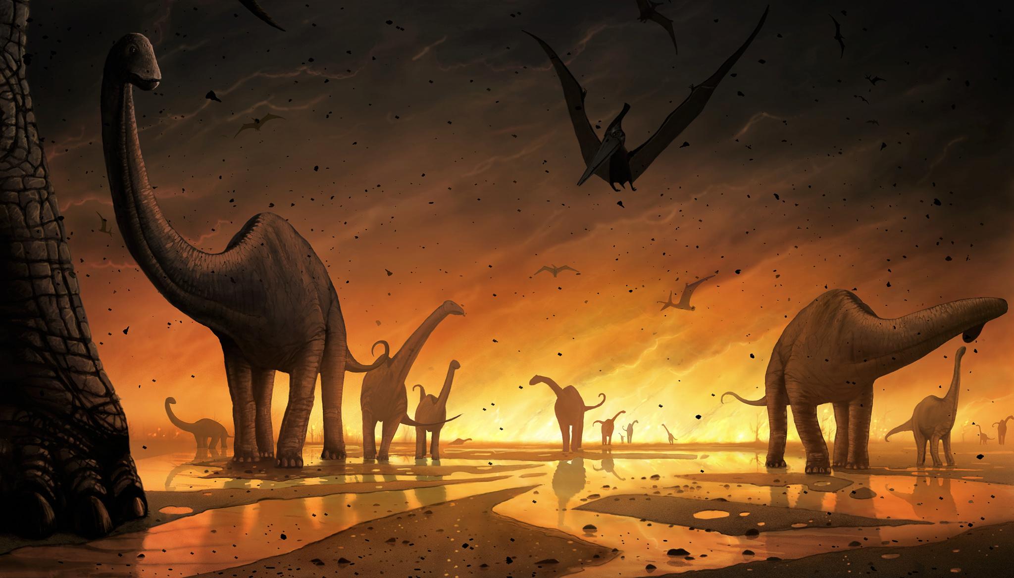 Image result for end cretaceous extinction