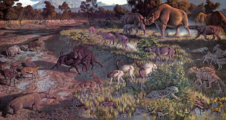 Oligocene Wildlife