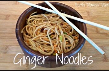 Vegetarian Ginger Noodles