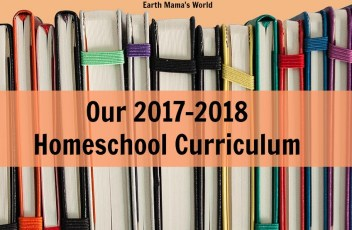 Our 2017-2018 Homeschool Curriculum