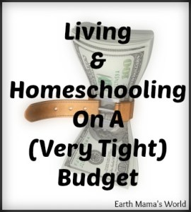 Living & Homeschooling On A Budget