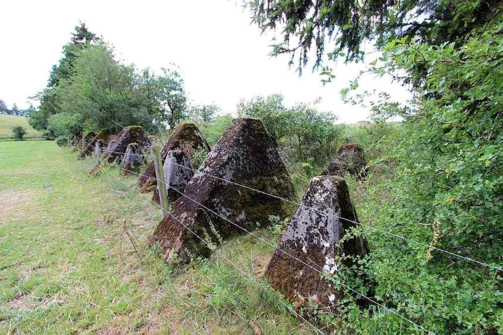 Siegfried Line (West wall)