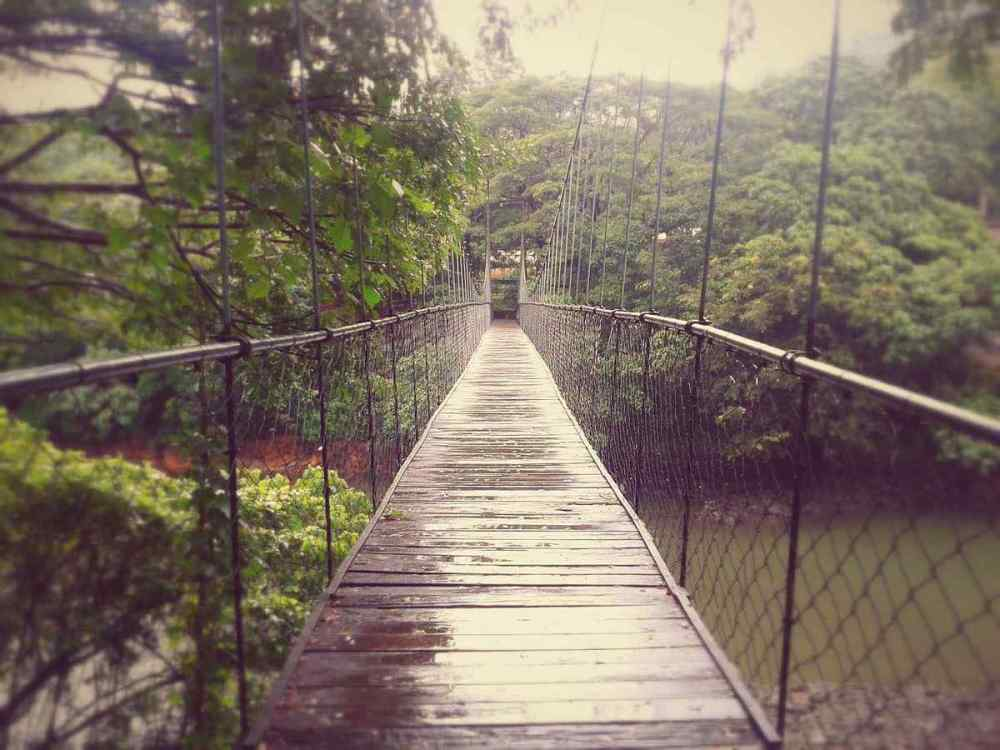 Thenmala Hanging Bridge, India