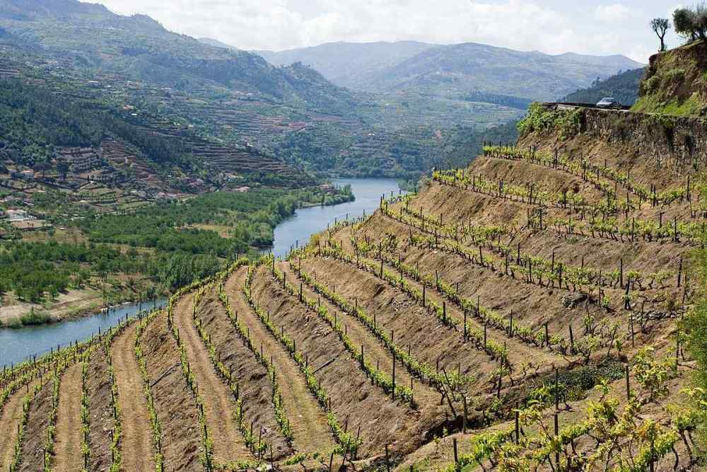Duoro Valley, Northern-Central Spain and Portugal