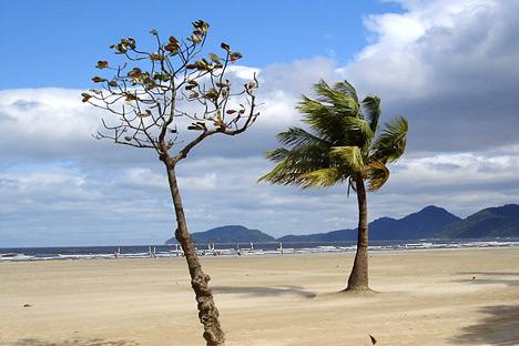 An Ocean Breeze: Mapping Brazil's Offshore Wind Power ...