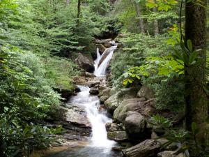 Waterfall hike to skinny dip falls