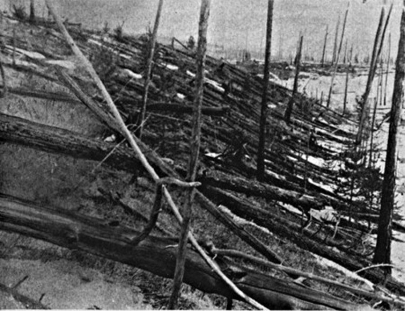 A explosão de Tunguska deixou a maioria das folhas caídas, alguns troncos de árvores em pé sem galhos.