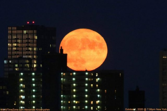 Slightly flattened golden full moon behind tall buildings with lighted windows.