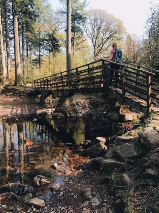 Eskdale Walks - Esk River