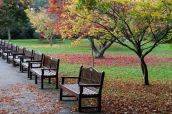 161113-roath-park-autumn-7