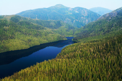 Tongass Alan Wu CC small 400x267 Saving the Tongass National Forest