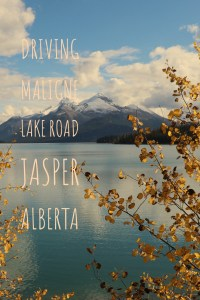 Maligne Lake, Jasper National Park. This is a highlight of Jasper, and a must visit!