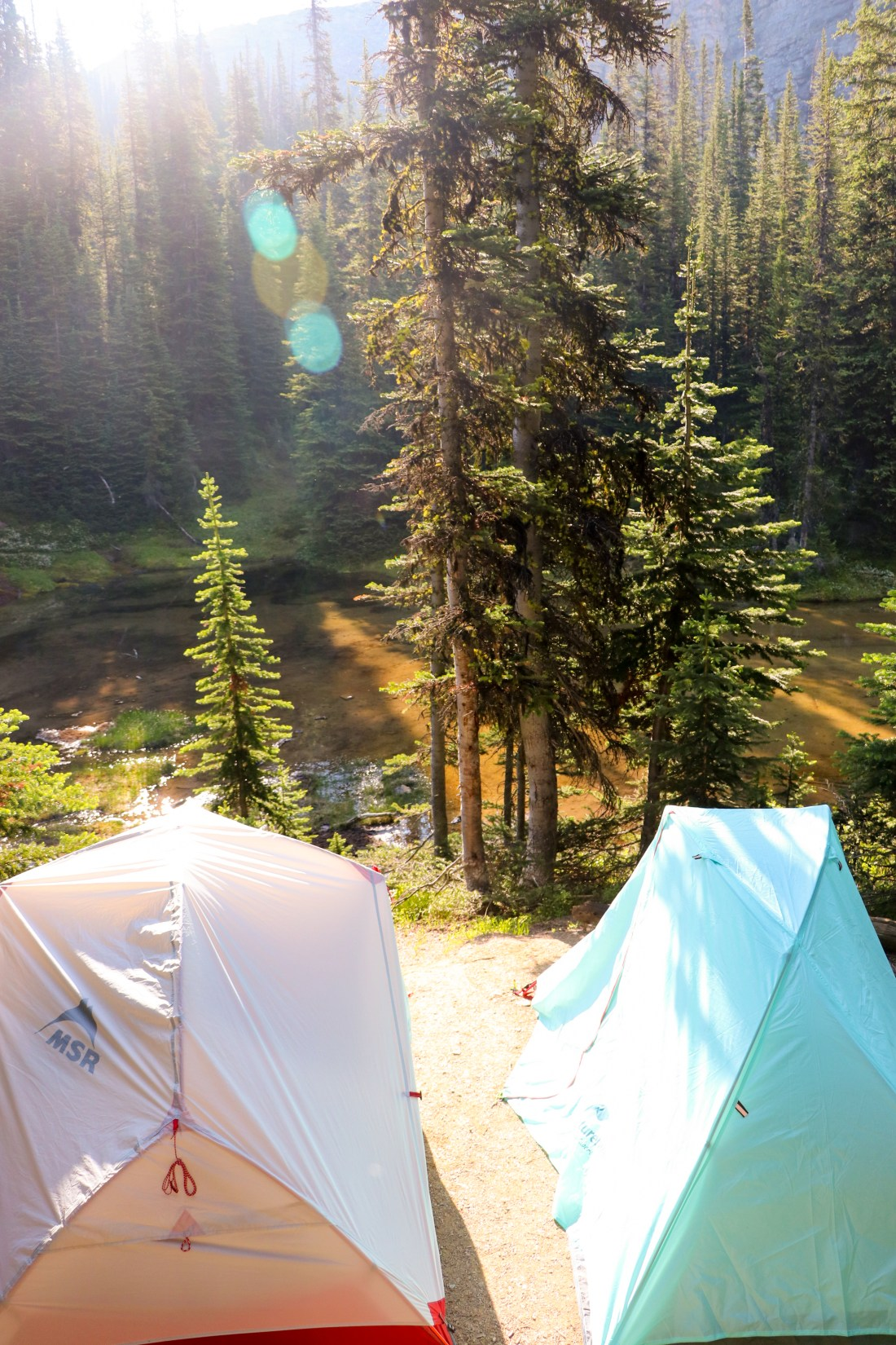 Campsite- curator Campground