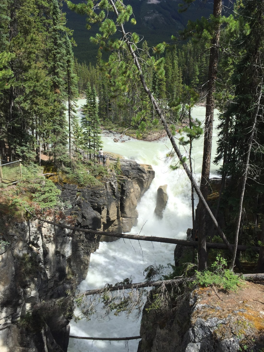 Sunwapta Falls in the Early Season