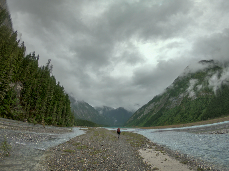 The Kinney Lake Flats! Berg Lake Trail
