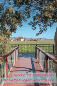 Guide to exploring McLaren Vale! one of Australia's premier wine regions