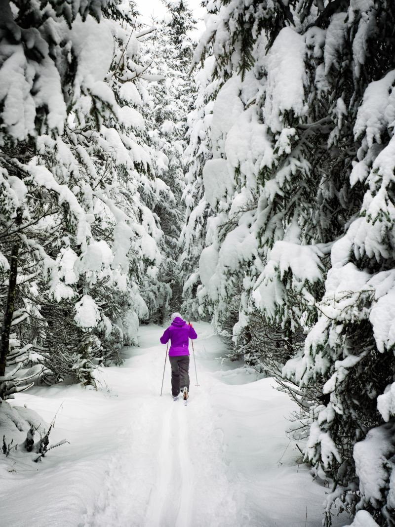 Woman cross country skiing in Banff