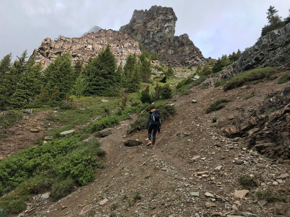 Trail to Devil's Thumb