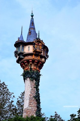 Rapunzel's Tower Pic