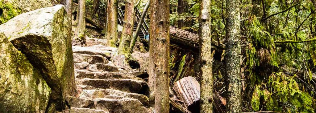 Squamish hikes include this trail up the back of The Stawamus Chief.
