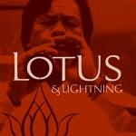 Lotus & Lightning