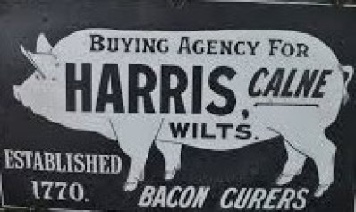Harris Agent Cropped