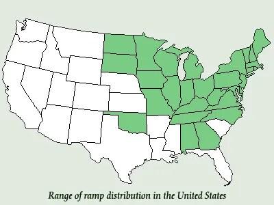 Distribution of Ramps