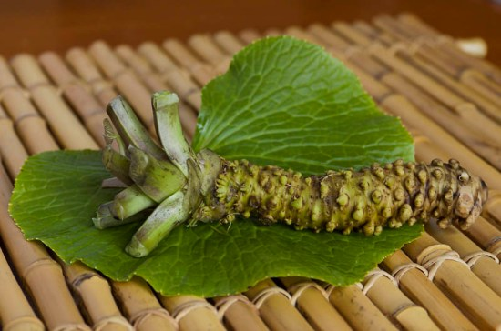Fresh Wasabi Rhizome and Leaf