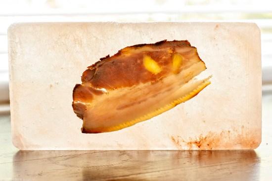 Sliced pork belly against salt block