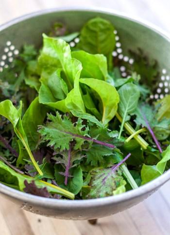 Hearty Garden Greens: Kale, Arugula & Swiss Chard