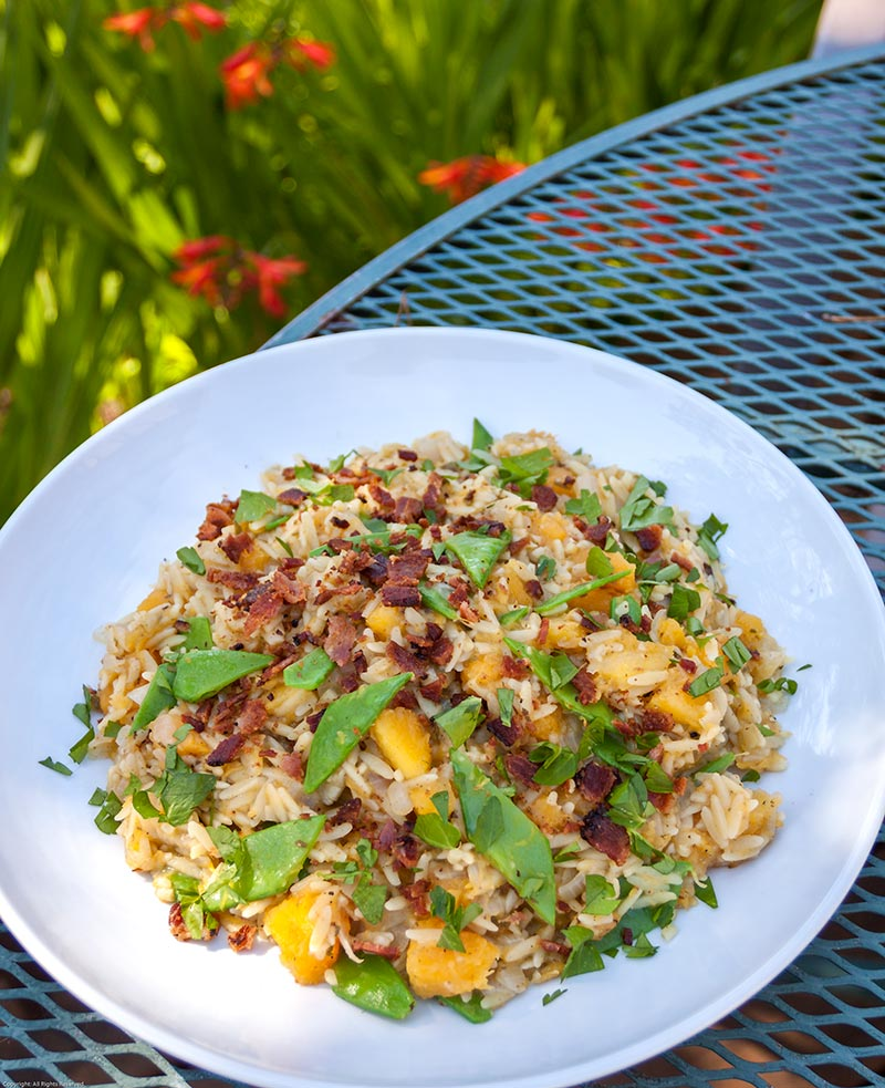 Orzo Risotto with Butternut Squash, Snow Peas, Bacon and Truffle Elixir