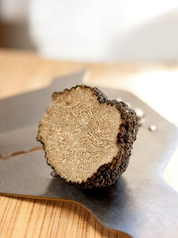 Summer Truffle with slicer