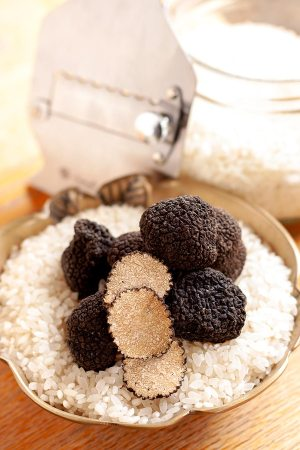 Summer truffles and shaver