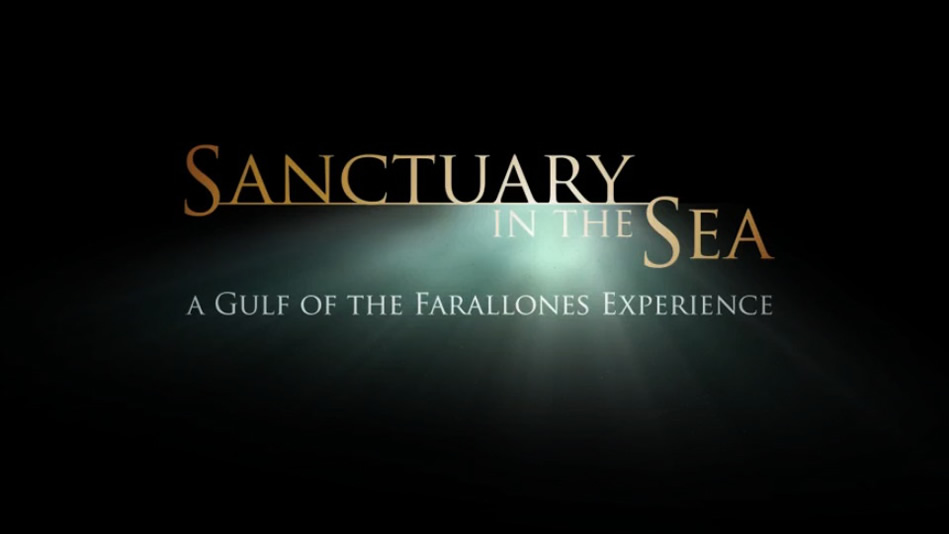Sanctuary in the Sea: A Gulf of the Farallones Experience