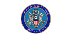 United States Bankruptcy court logo client Governmental Security Systems